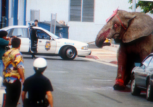 19 Years Since Tyke The Circus Elephant Was Brutally