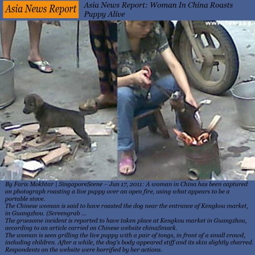 ASIA NEWS REPORT CHINA JUNE 17 2011