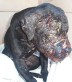 Dog-Fighting-Injuries-Left-Untended-On-Animal-Rights-Action