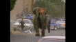 Elephant goes out of control and gets executed   YouTube