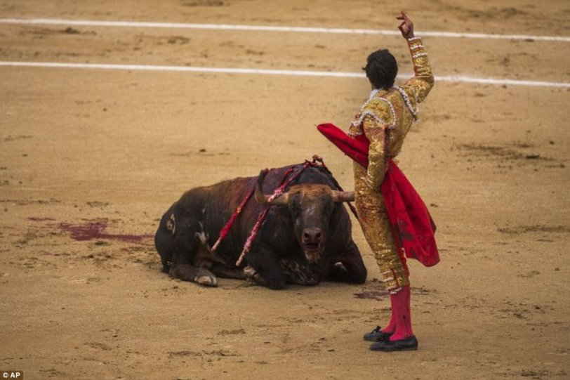 1400683592138_wps_Spanish_bullfighter_Jimen