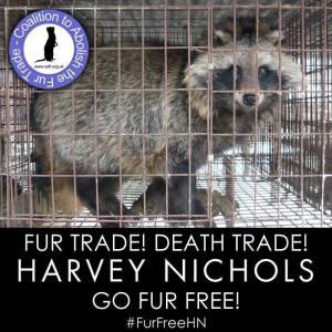 Harvey Nichols 1